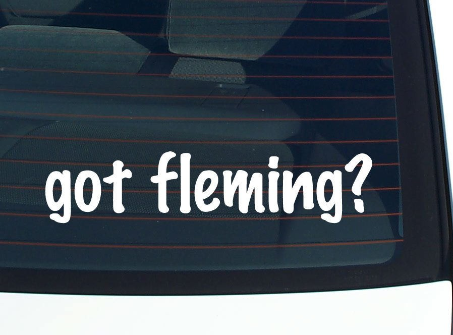 fleming? FAMILY LAST NAME SURNAME FUNNY DECAL STICKER VINYL WALL CAR