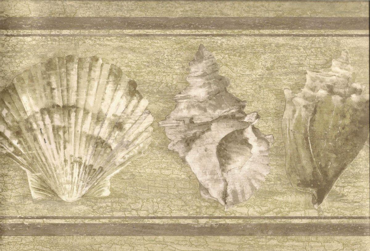 Beach Wallpaper Border Seashells Wall Border Grey Crackle