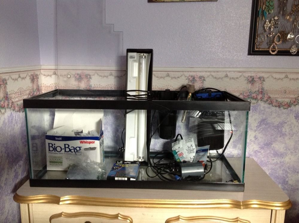 20 gallon fish tank w bubbler heater lid theometer for 5 gallon fish tank heater